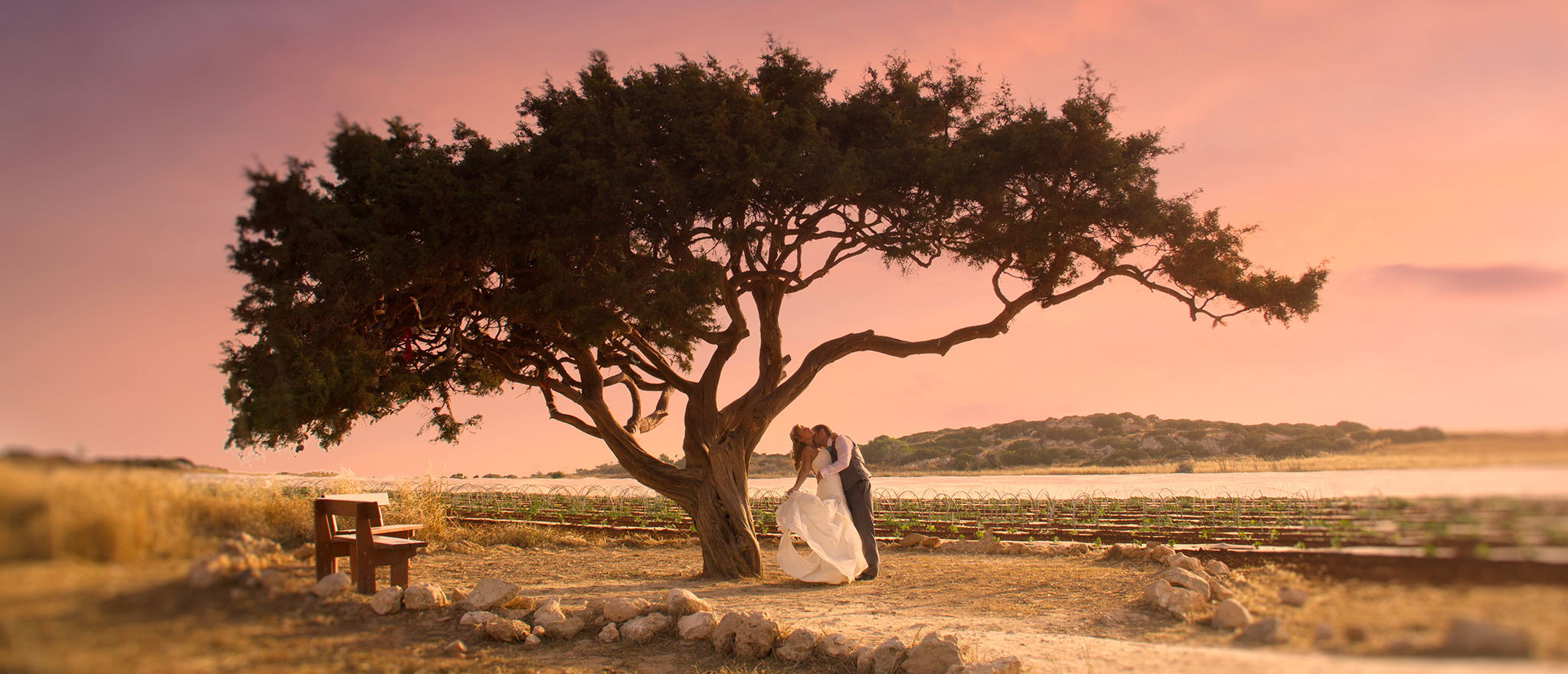 Wedding Packages Cyprus